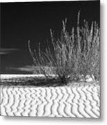 Morning At White Sands  Metal Print