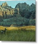 Morning In The Badlands Metal Print