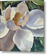 Morning Magnolia Metal Print