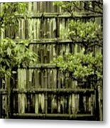 Mossy Bamboo Fence - Digital Art Metal Print