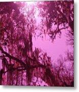 Mossy Splendor Metal Print