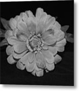 Mothers Day Flower Metal Print
