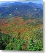 Mount Chocorua Foliage Metal Print