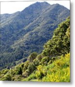 Mount Tamalpais From Blithedale Ridge Metal Print