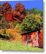 Mountain Home Place Back Yard  Metal Print