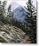Mountain Pathway Metal Print