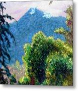 Mountain Rain Forrest Metal Print