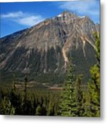 Mountain View 2 Metal Print