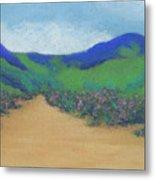 Mountains At Moholoholo Metal Print