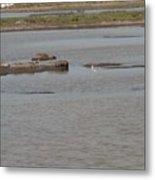 Mud Flat Waterways Metal Print