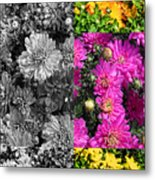 Mums The Word Metal Print