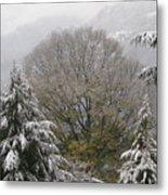 Mussoorie Winter 1 Metal Print