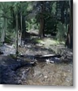 Mysterious Woods Metal Print