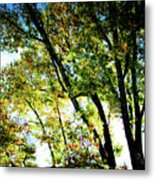 Mystical Tree Metal Print