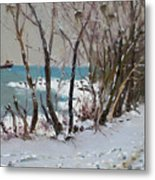 Naked Trees By The Lake Shore Metal Print by Ylli Haruni