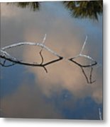 Natures Bridge In Color Metal Print