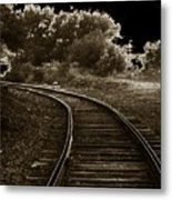 Never A Straight Path Metal Print