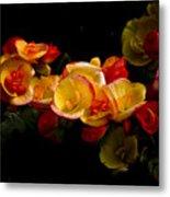Night Begonias Two Metal Print