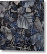 No Snow Metal Print