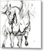 Noble Stallion Metal Print