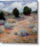 North Of Santa Fe  Metal Print