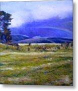 Northeast Tasmania Australia 1995  Metal Print
