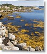 Nova Scotia Seascape Metal Print