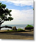 Ocean Formed Tree Metal Print
