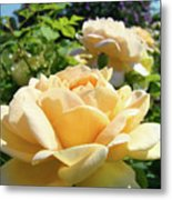 Office Art Prints Rose Peach Orange Rose Flower Baslee Troutman Metal Print