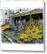 Old Homeplace Metal Print