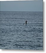 Old Man In The Sea Metal Print