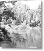 Old Michigan Creek Metal Print