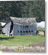 Old Oak Harbor Barn Ba 9209 Metal Print