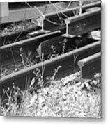 Old Rails Metal Print