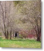 Old Shack In The Woods Metal Print