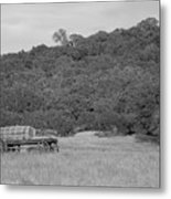 Old Water Wagon Metal Print