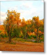 Olive Tree Forest Metal Print