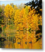 On Golden Pond 2 Metal Print