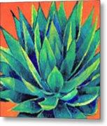 Orange And Agave Metal Print