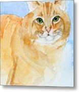 Orange Taffy Metal Print