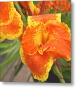 Orange Ya Glad Metal Print
