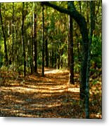 Orangedale Path Metal Print