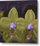 Orchids Golden Metal Print