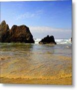 Oregon Coast 9 Metal Print