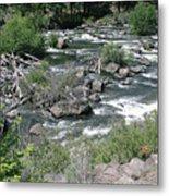 Oregon Stream Metal Print
