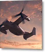 Ospreys In Flight Metal Print