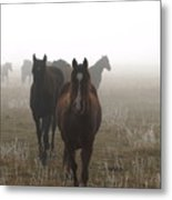 Out Of The Mist Metal Print