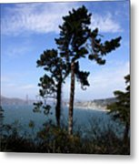 Overlooking The Bay Metal Print