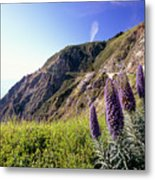 Pacific Coast View With Blue Wildflowers Metal Print by George Oze