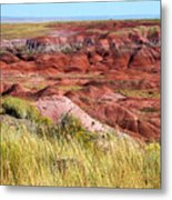 Painted Desert 0242 Metal Print